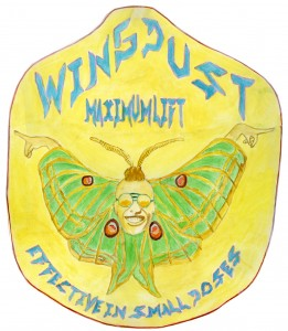 wingdustpaintsmallcarreon
